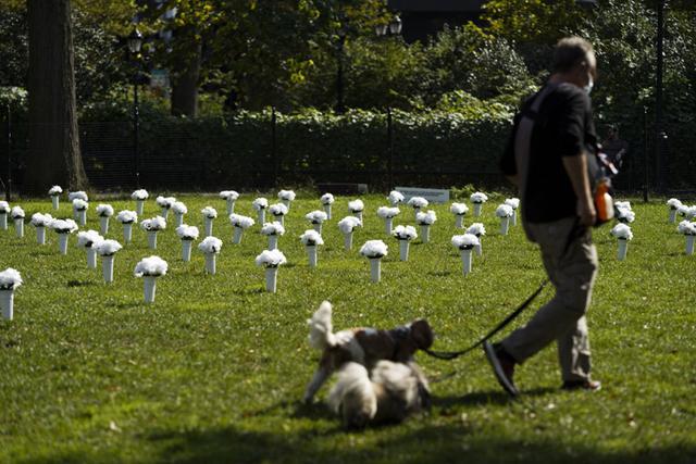 全球连线 丨 美国纽约:红色瓶花悼念枪枝暴力遇难者 第9张图片