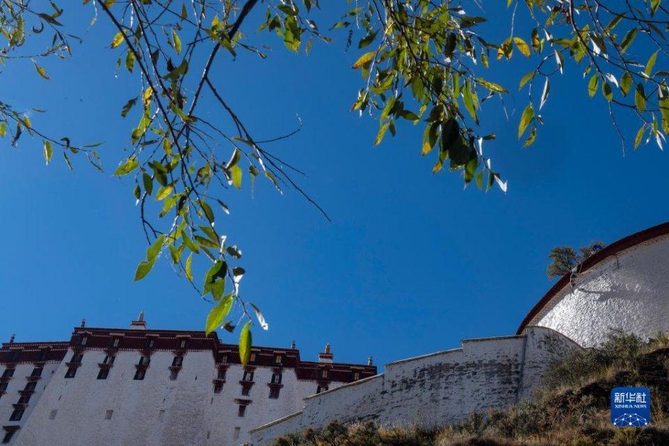 """西藏布达拉宫年度""""换新装"""""""